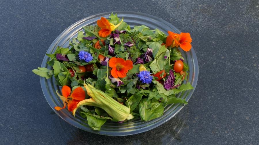 Altijd lekkere saladesmaken